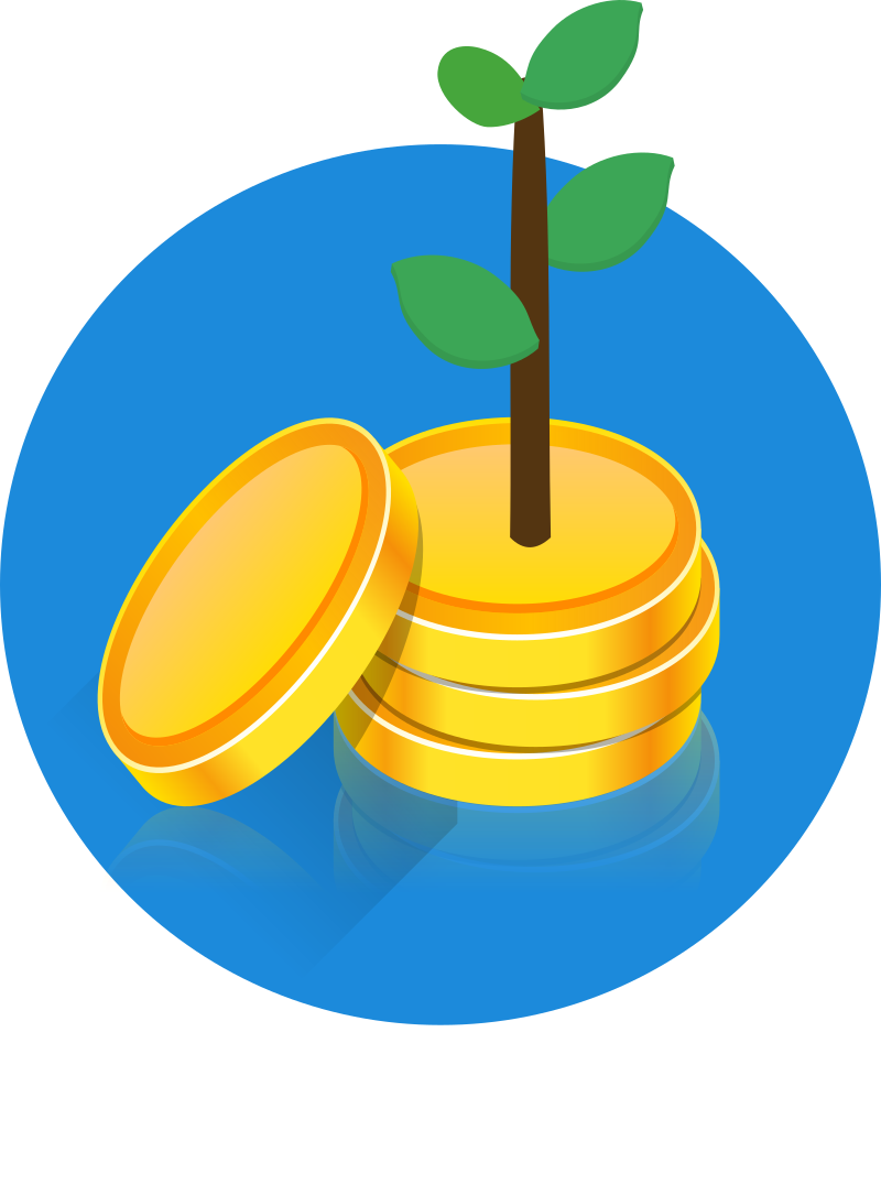 coin to the moon